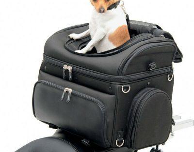 Torba transportowa dla zwierząt na motocykl, quad
