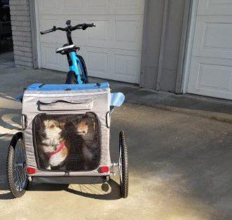 Przyczepka rowerowa dla psa